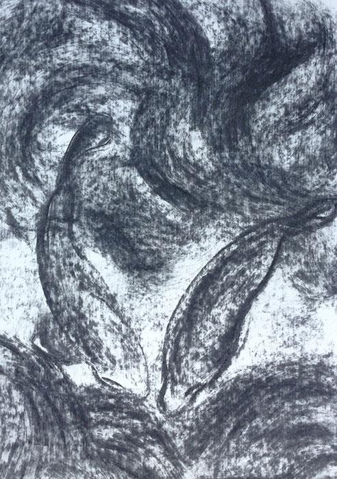 GONZALO_MARTIN-CALERO-DRAWINGS-fish-drawings-035.jpg