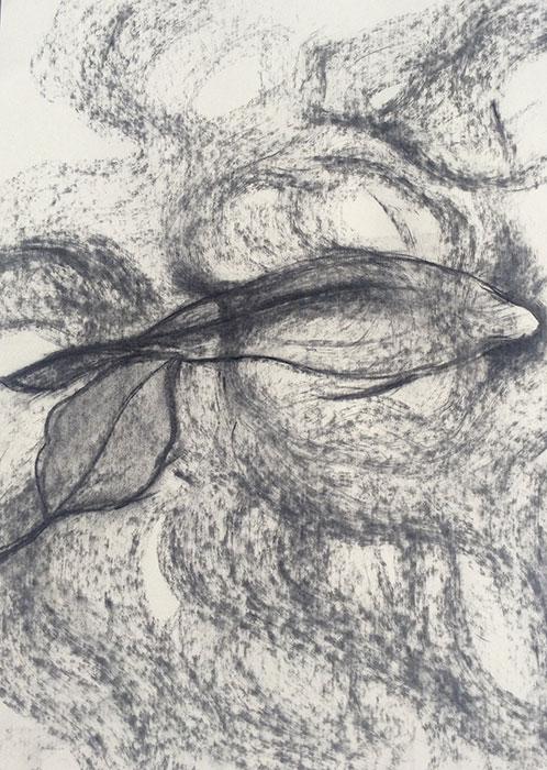 GONZALO_MARTIN-CALERO-DRAWINGS-fish-drawings-022.jpg