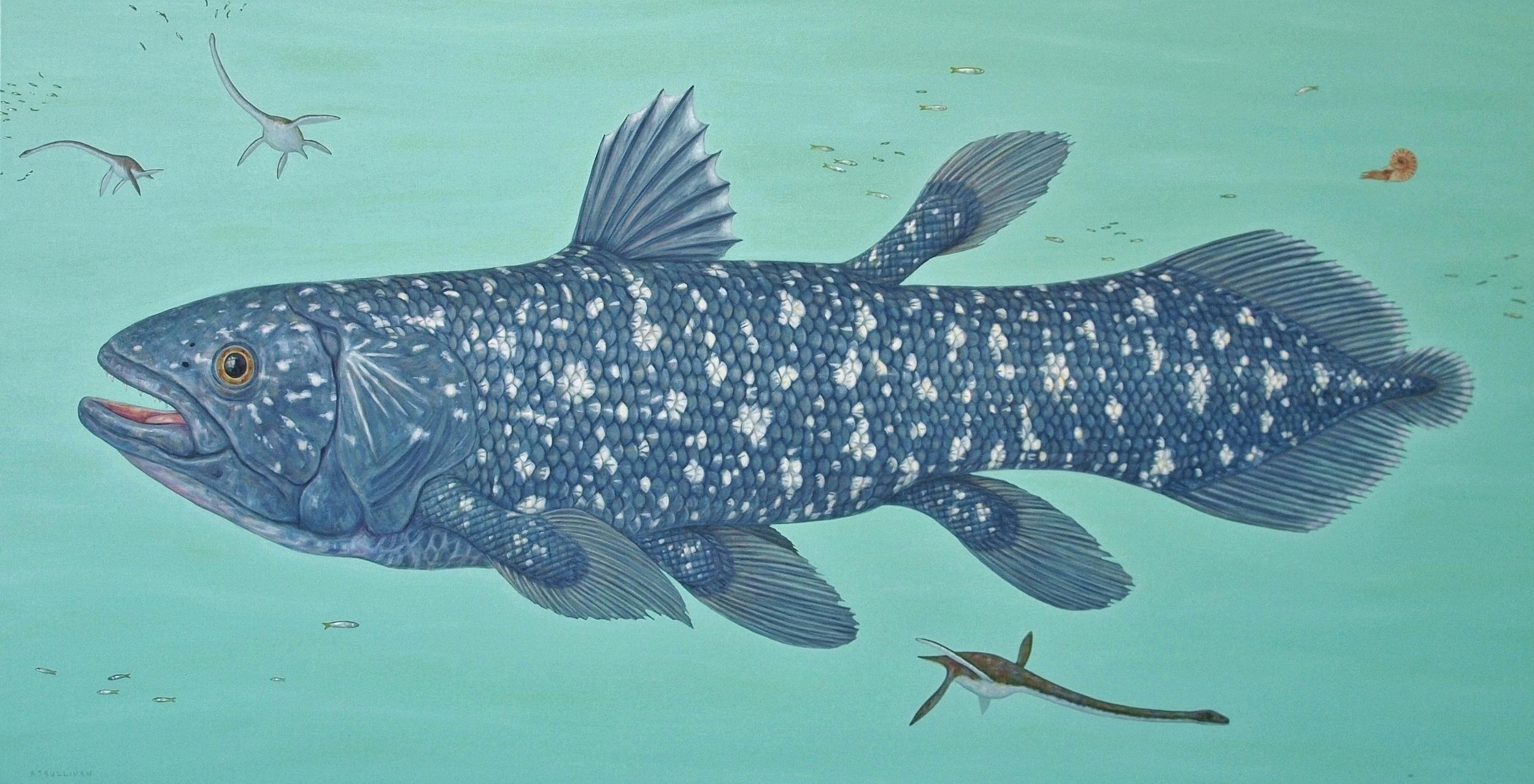 Coelacanth and Elasmosaurs