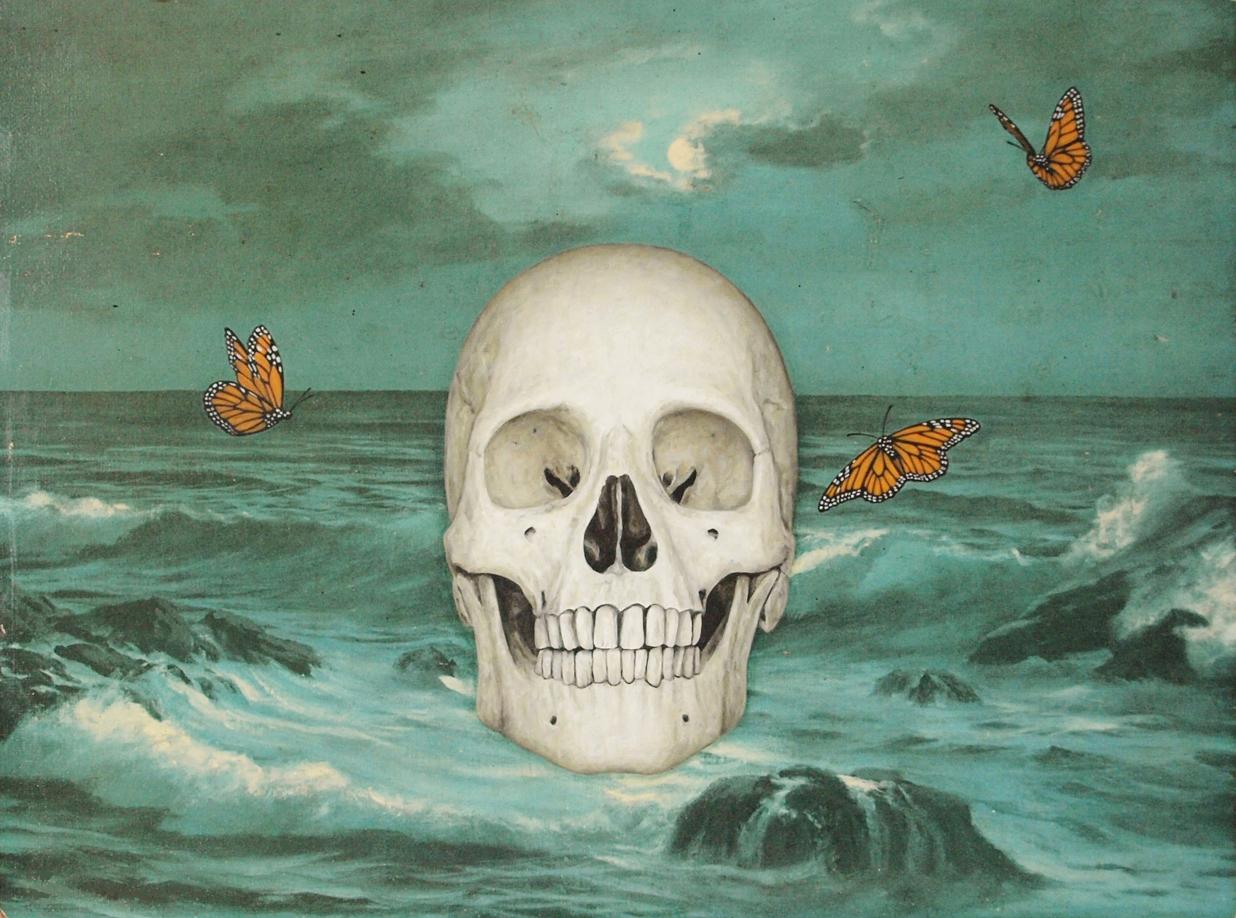 Ocean Butterfly Dream