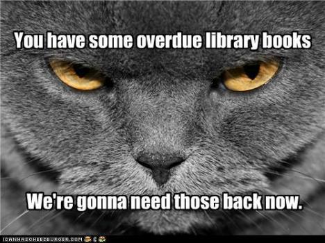 I love it when I meet a library cat--but the ones I've met at the checkout desk have been MUCH friendlier.