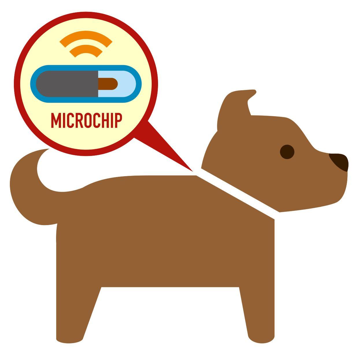 SR Microchip.JPG