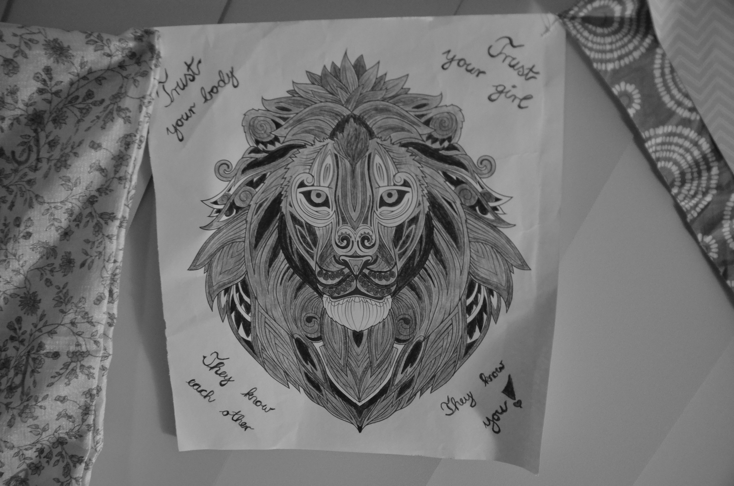One of my prayer flags from the Blessingway - with a lion, my totem animal.