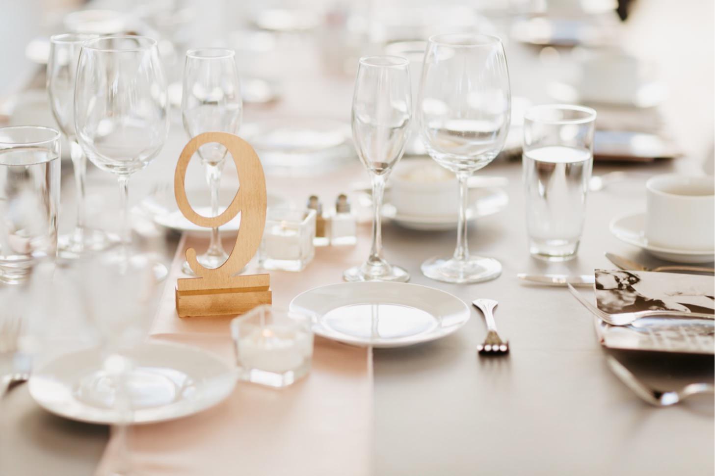 ritz-charles-wedding-reception-downtown-indianapolis-wedding-photographer007.JPG