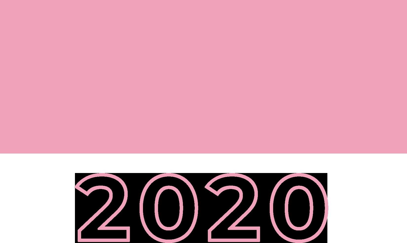 united-2020.png