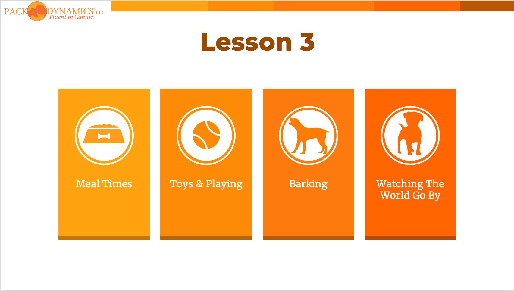 Pack Dynamics - Online Course - Lesson 3.png