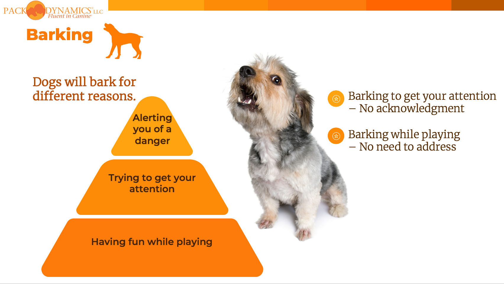 Pack Dynamics - Online Course - Lesson 3 - Barking Dogs