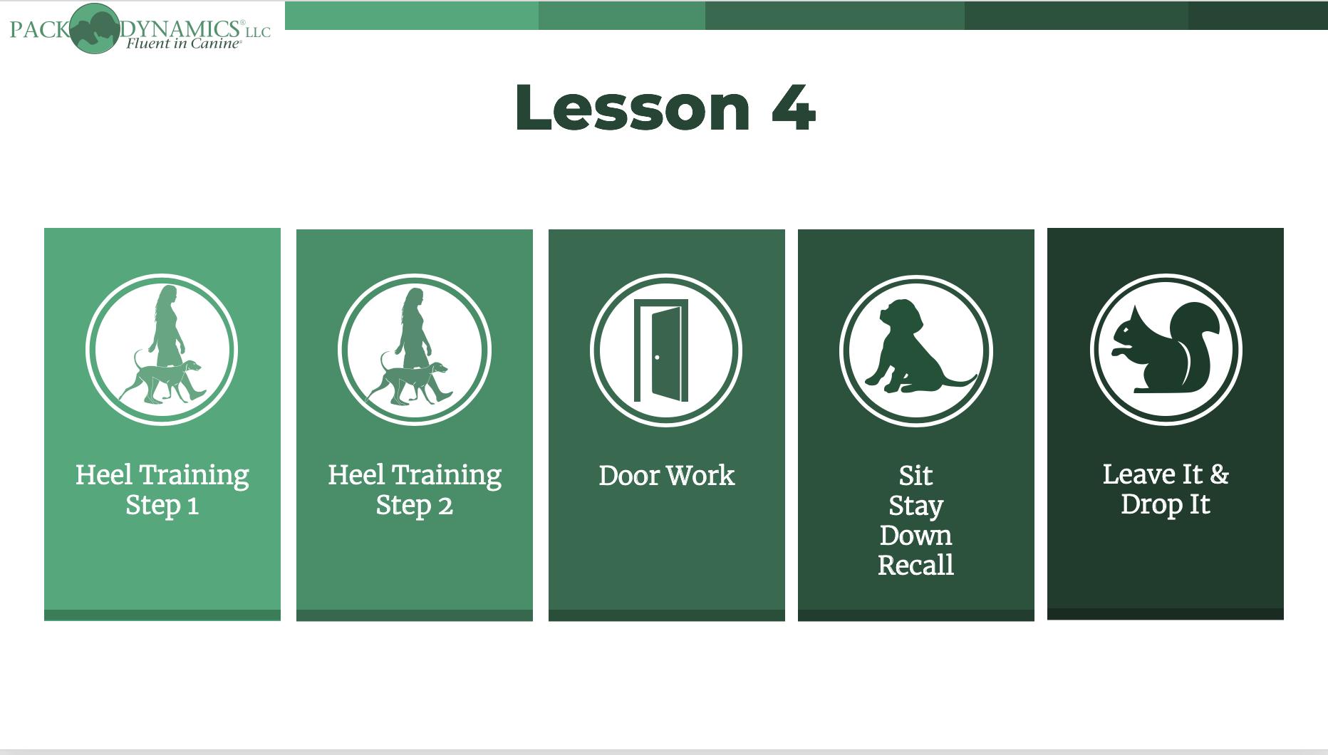 Pack Dynamics - Online Course - Lesson 4