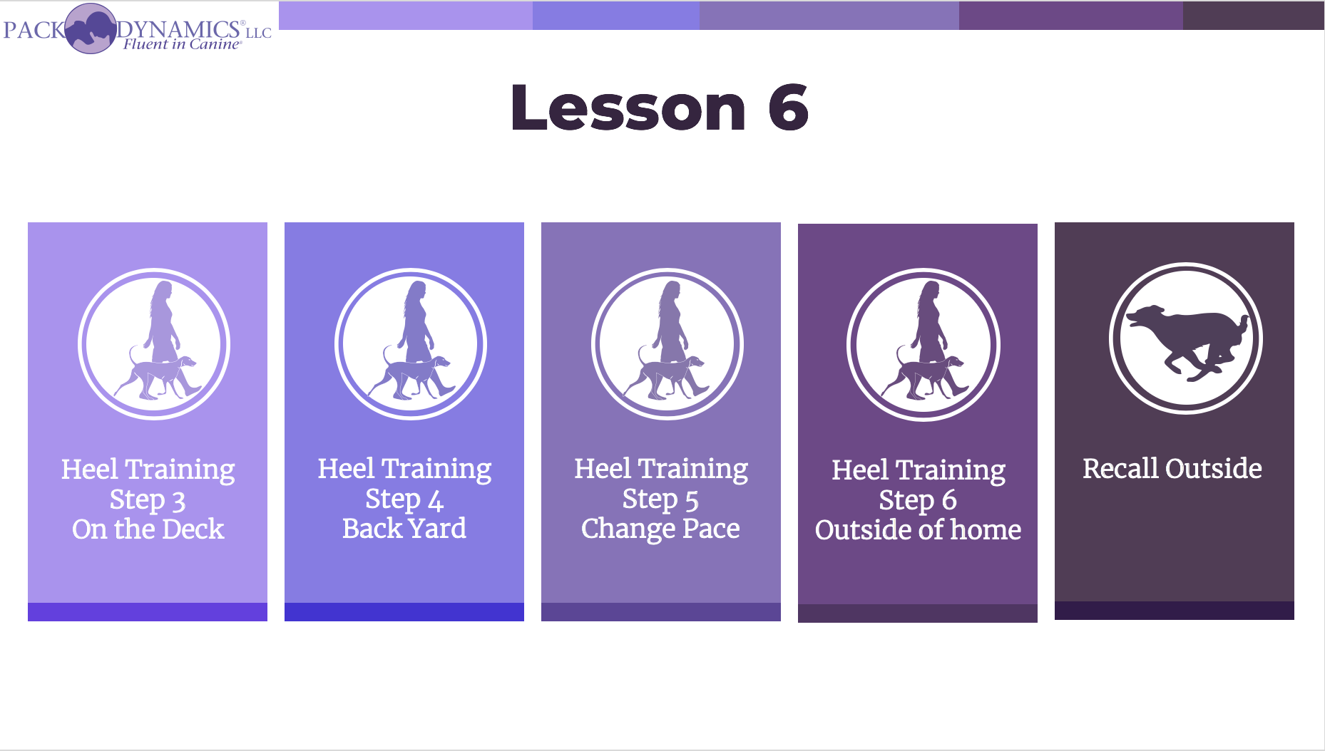 Pack Dynamics - Online Course - Lesson 6