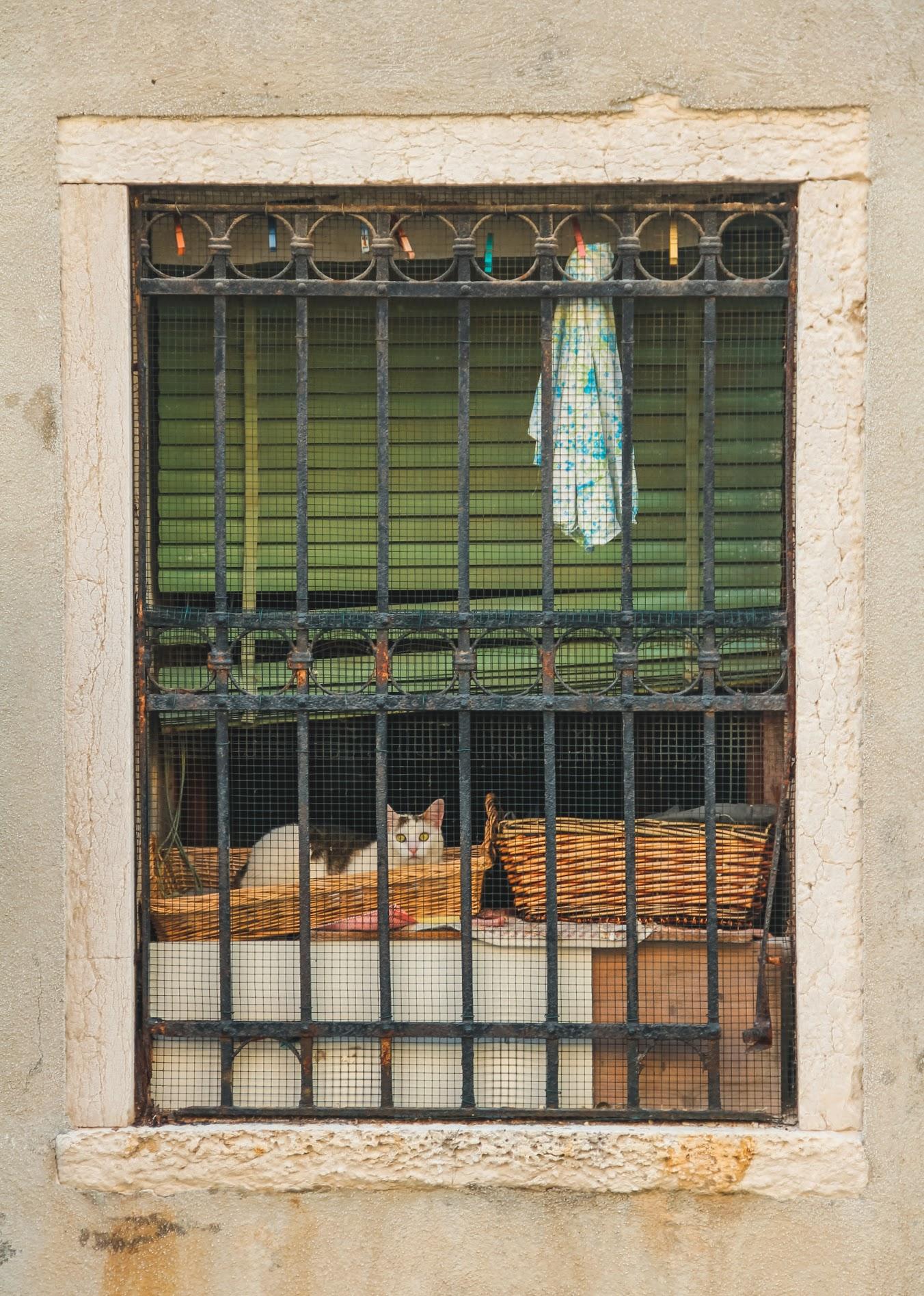 2012_Italy-331.jpg