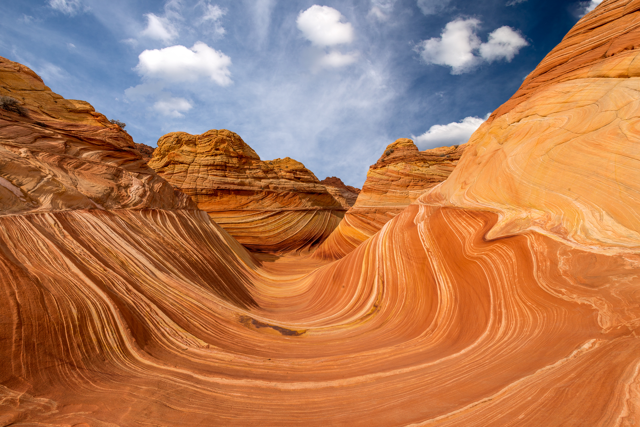 DSC_9425 Wave Vermillion Cliffs.jpg