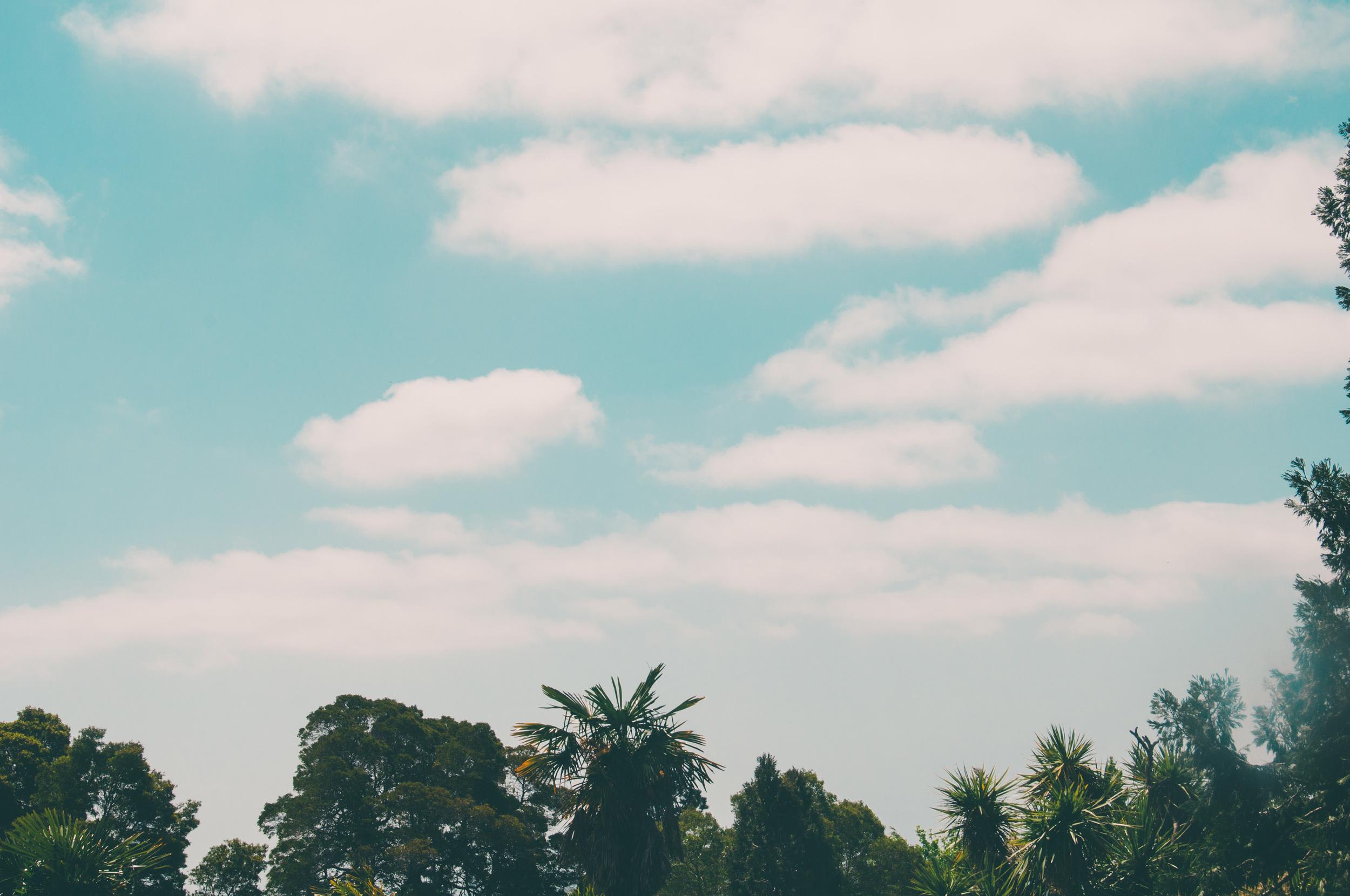 turquoise sky (1 of 1).jpg