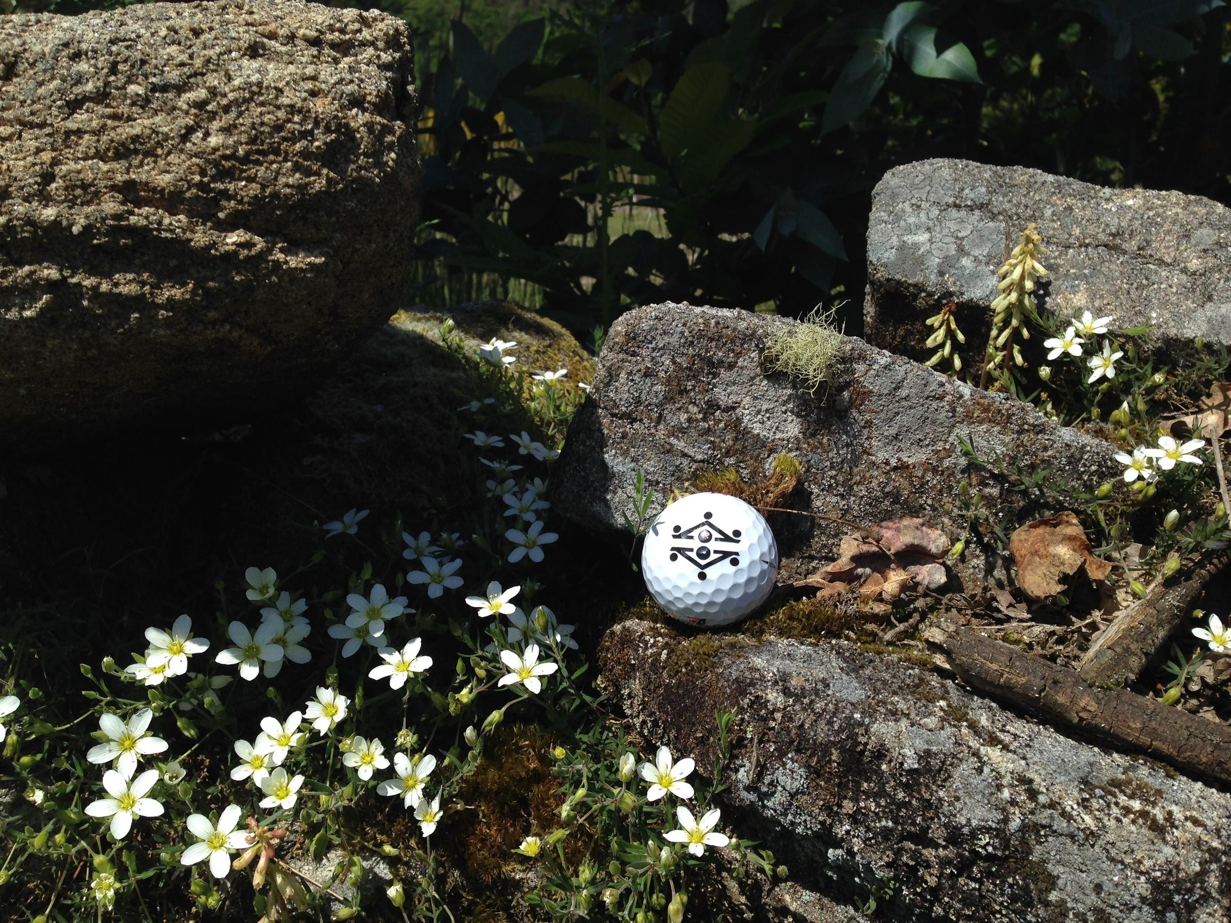 Golf in Galicia Golf by josh hirts pga professional