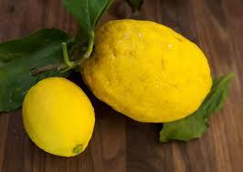Lemons Golf by josh Hirst pga professional