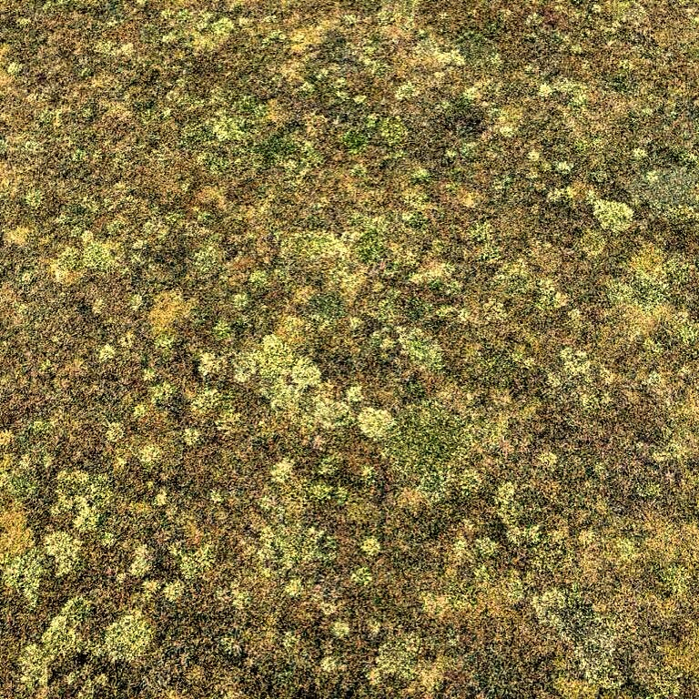 A close up of the Greens at Chambers Bay