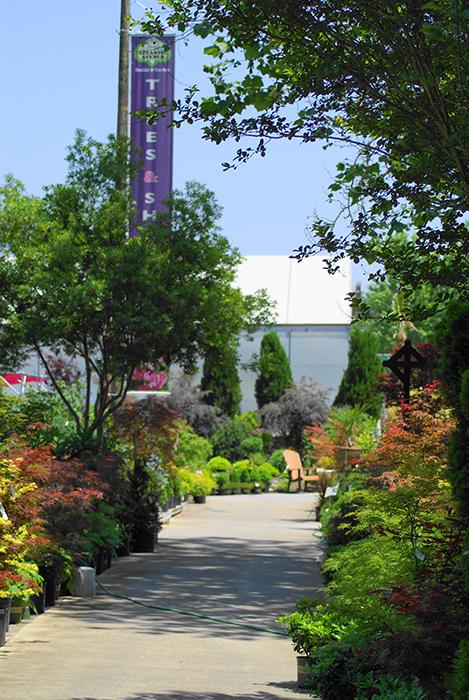 Images courtesy of Atlantic Gardening Company