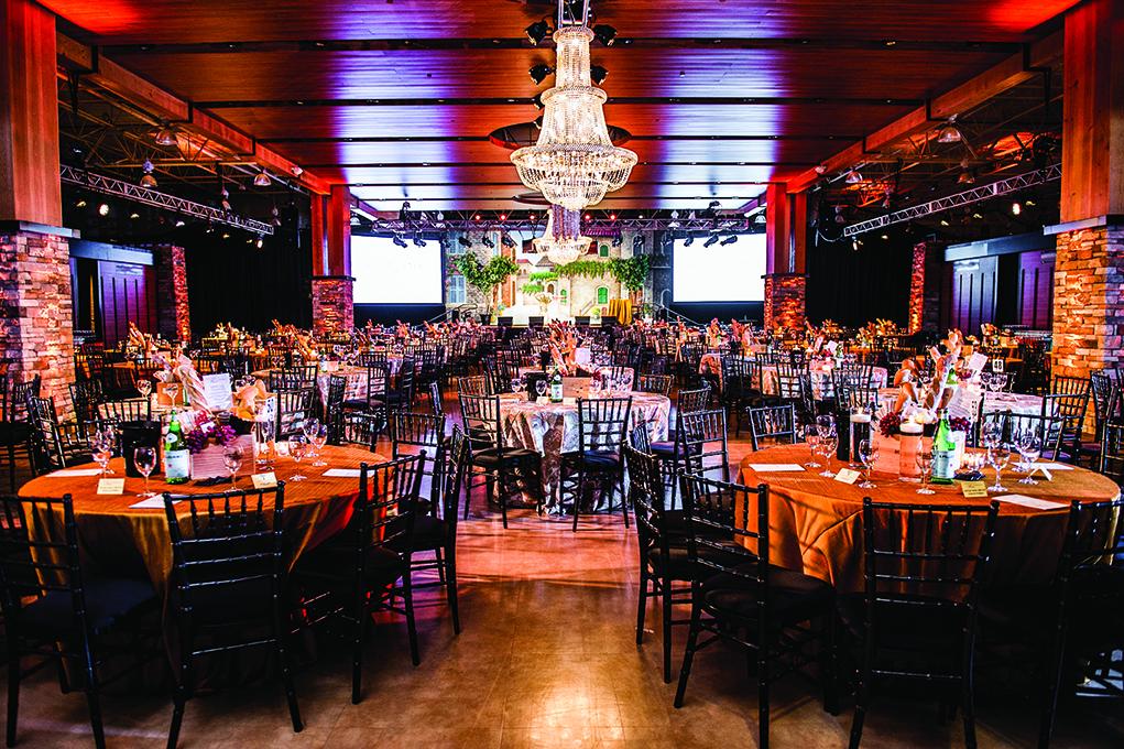 Triangle Wine Experience Gala (Photo: Kate Pope Photography)
