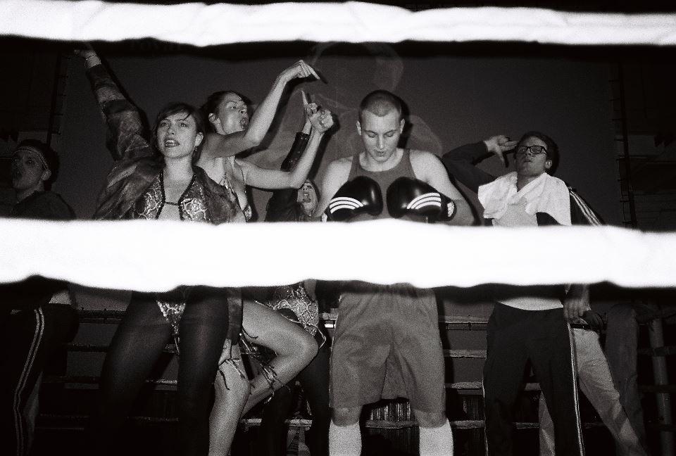 Boxer.jpeg