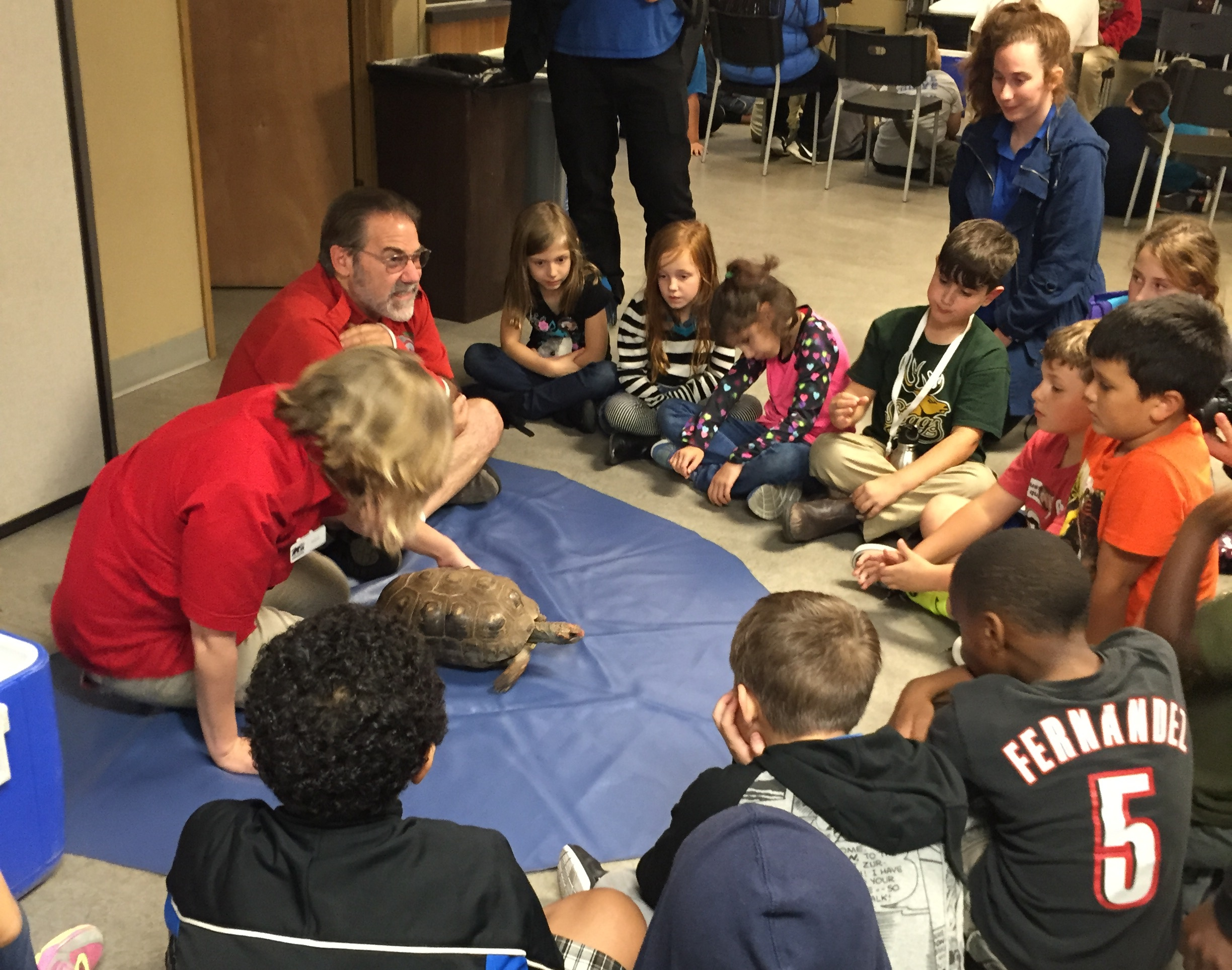 Members learn how to properly pet different reptiles.