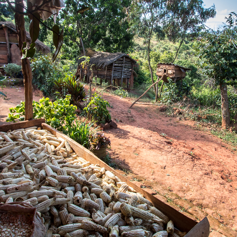 Adam Dickens Photography Malawi 2015 - 4110.jpg