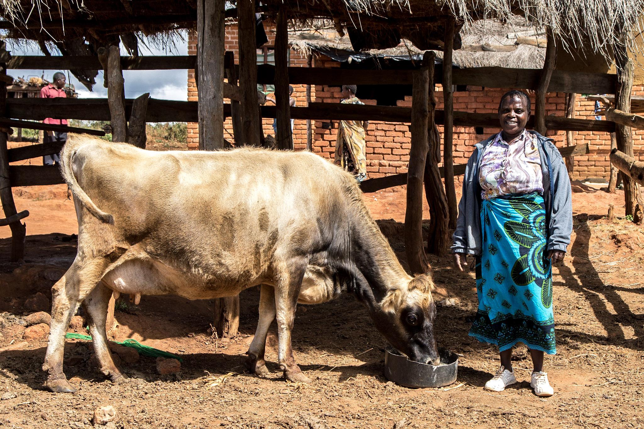 Adam Dickens 2015 - Deki, Malawi - 365.jpg