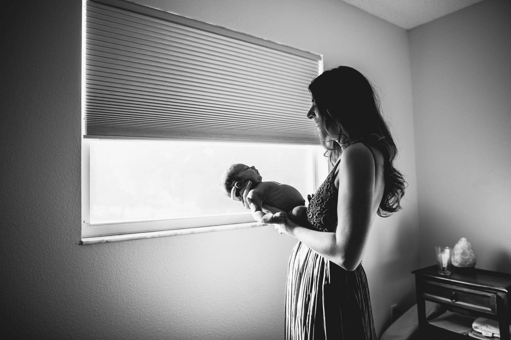 newborn portraits st pete fl