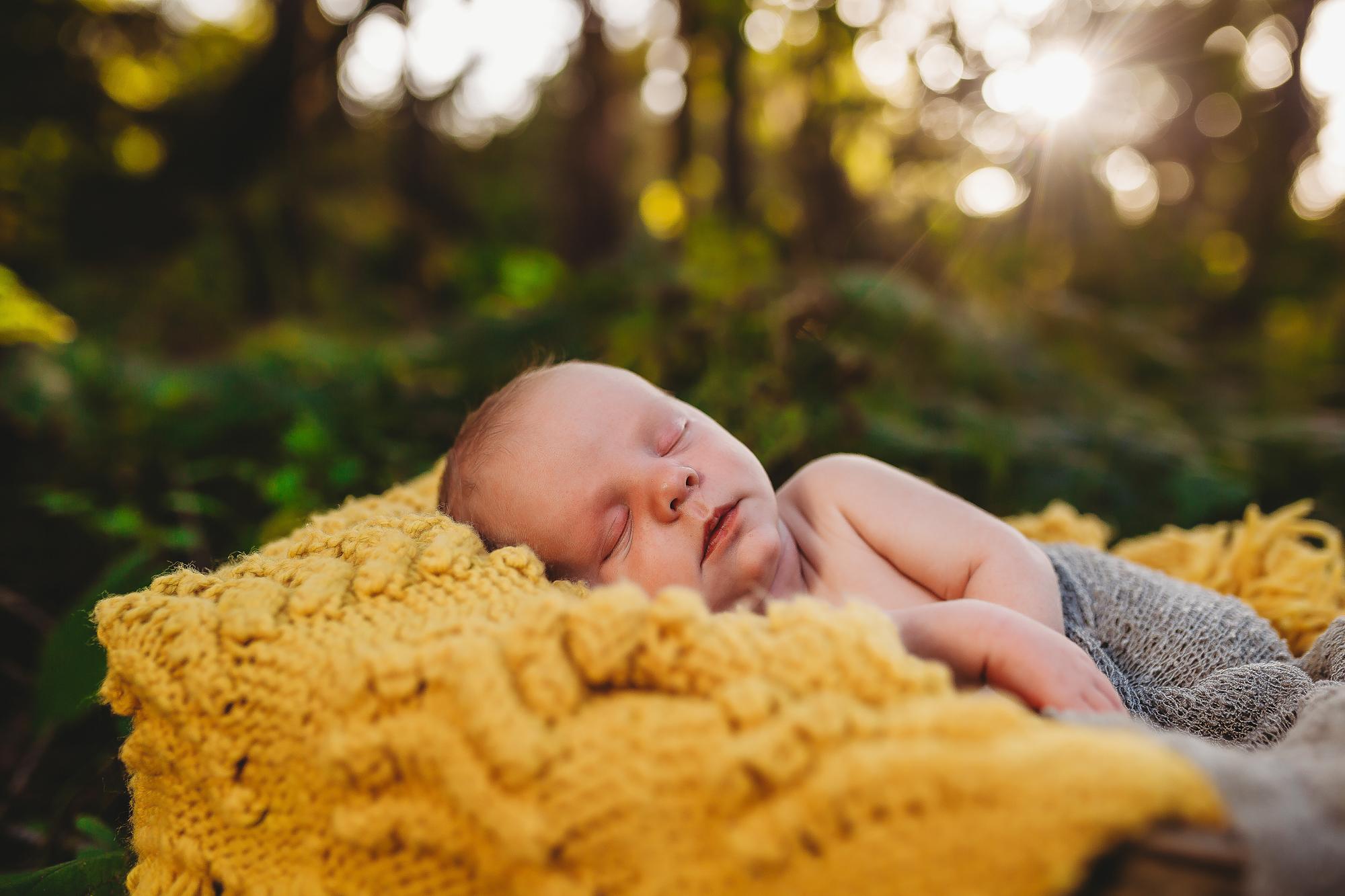 lifestyle newborn photographer, pinellas county fl