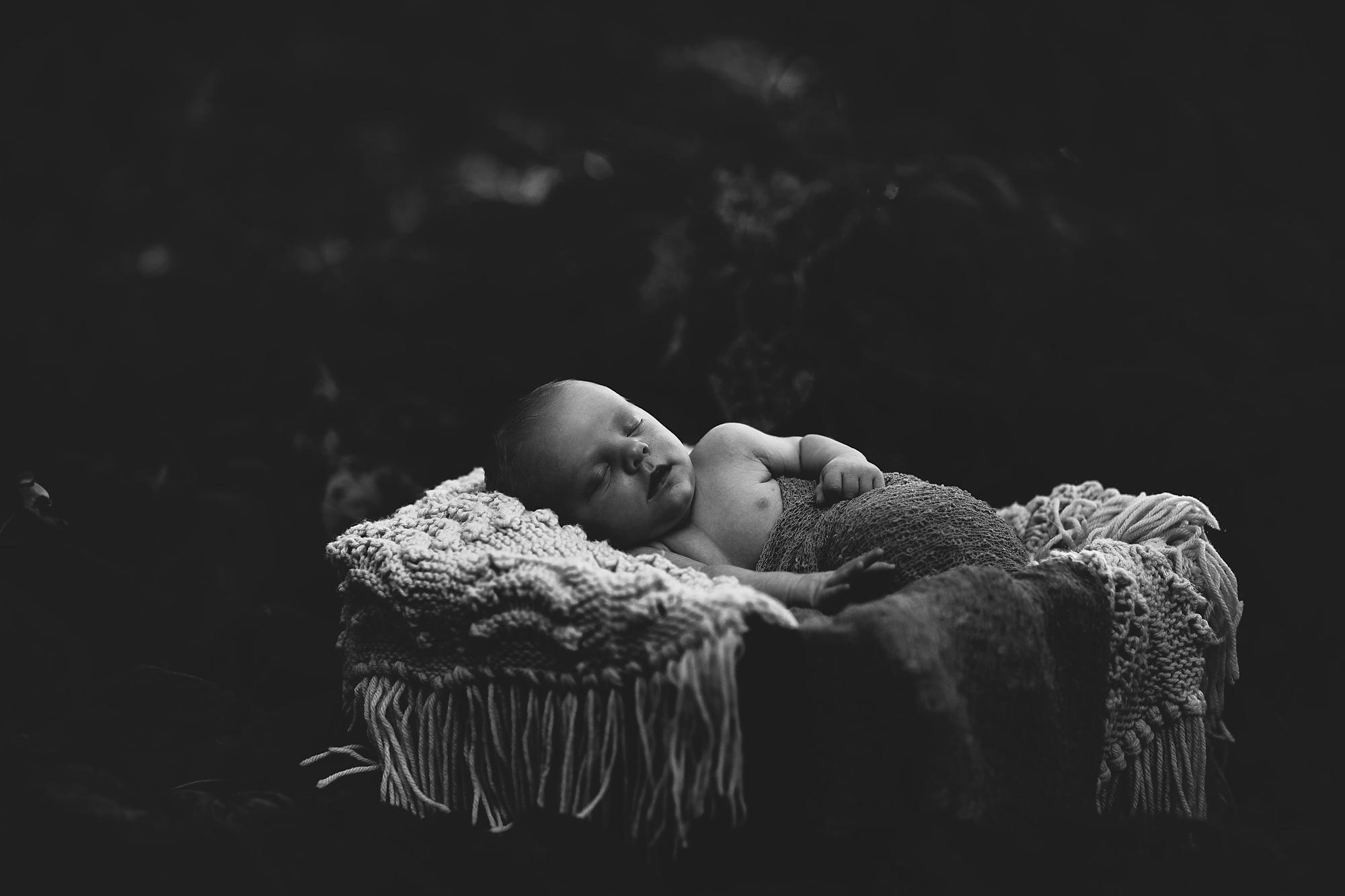 newborn portraits seminole fl