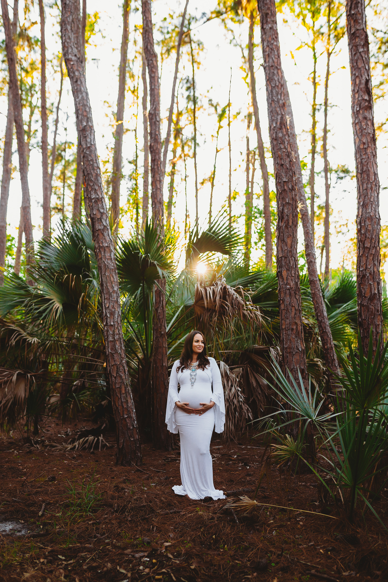 maternity portrait photography in palm harbor fl