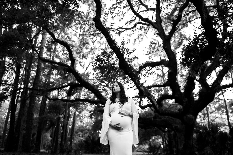 best maternity photographer near me, tampa bay fl