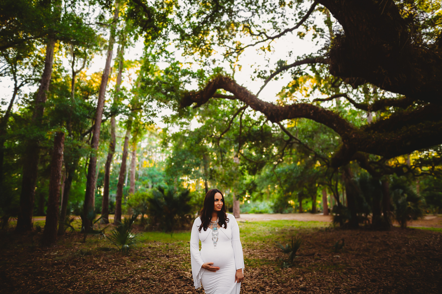 epic maternity photos, maternity photographer of pinellas county fl