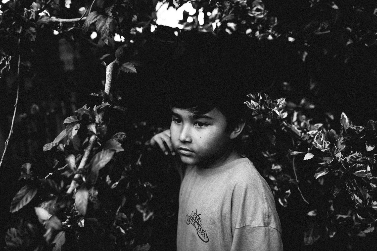 portraits of kids in the summer, florida photography