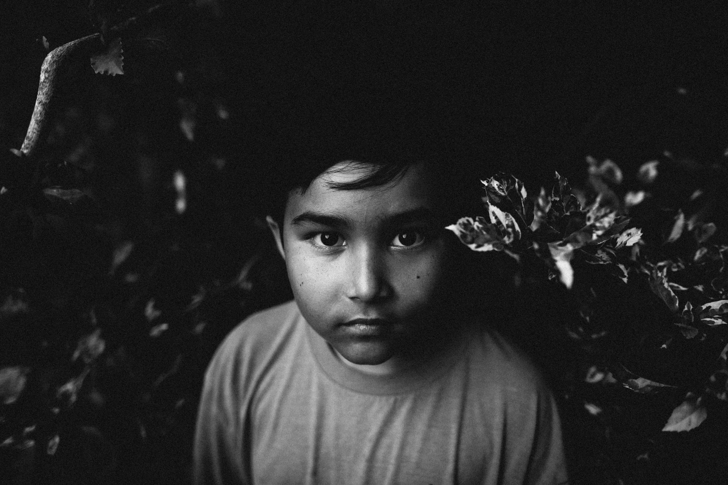 portraits of older kids, pinellas family photos