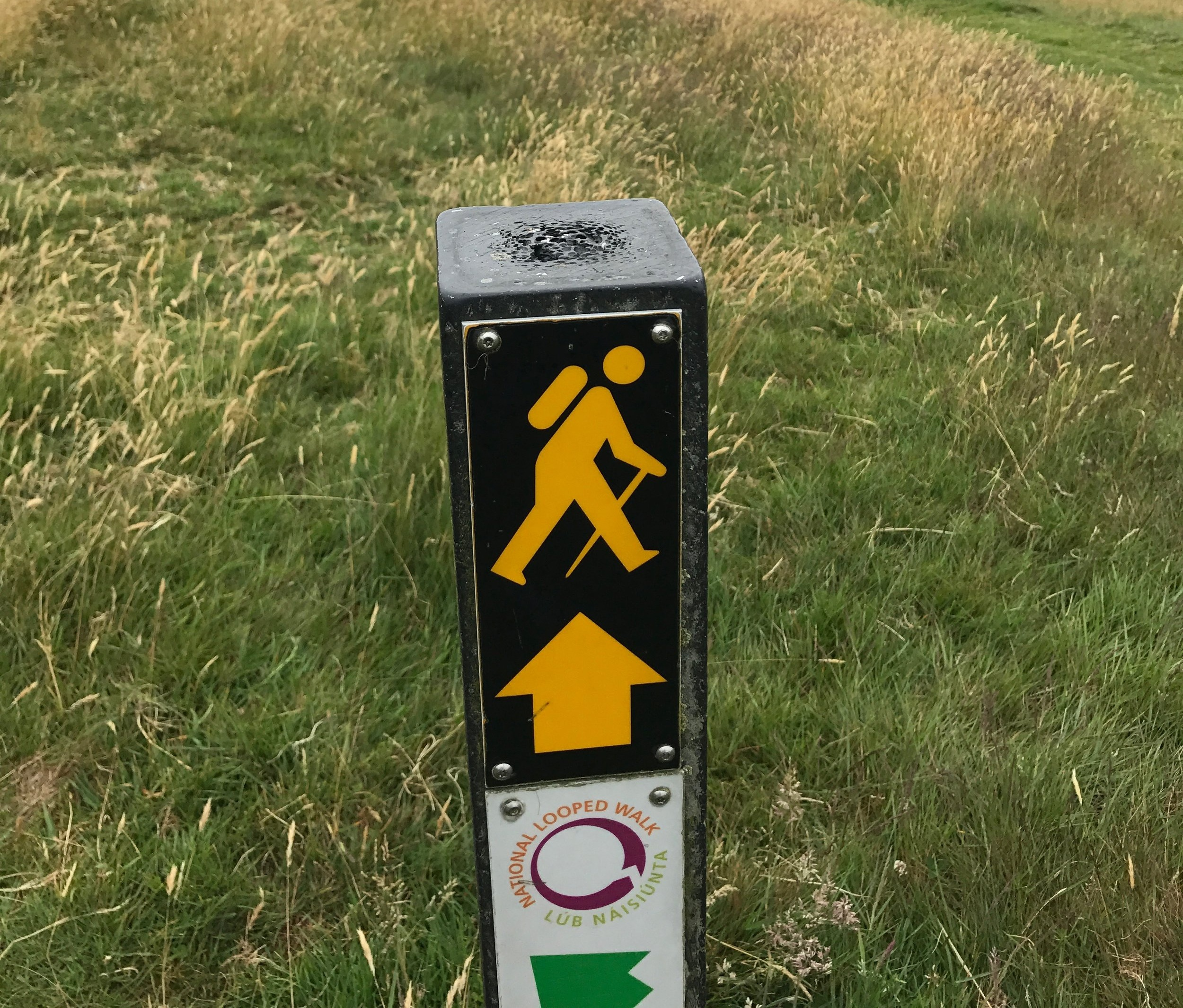 The yellow man waymark will become a welcomed companion on the Wicklow Way.