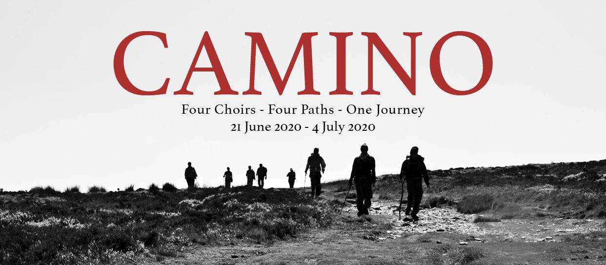 Vox+Camino+Graphic.jpg