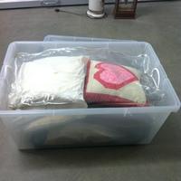 0154: Plastic Bin of Assorted Pillows