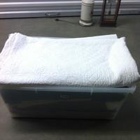 0155: Plastic Bin of Assorted Blankets/Linens
