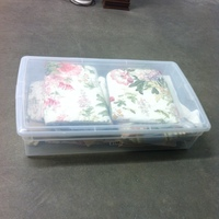 0156: Small Plastic Bin of Assorted Placemats