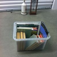 0159: Small Plastic Bin of Books