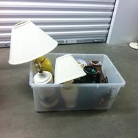 0169: Plastic Bin of Assorted Lamps