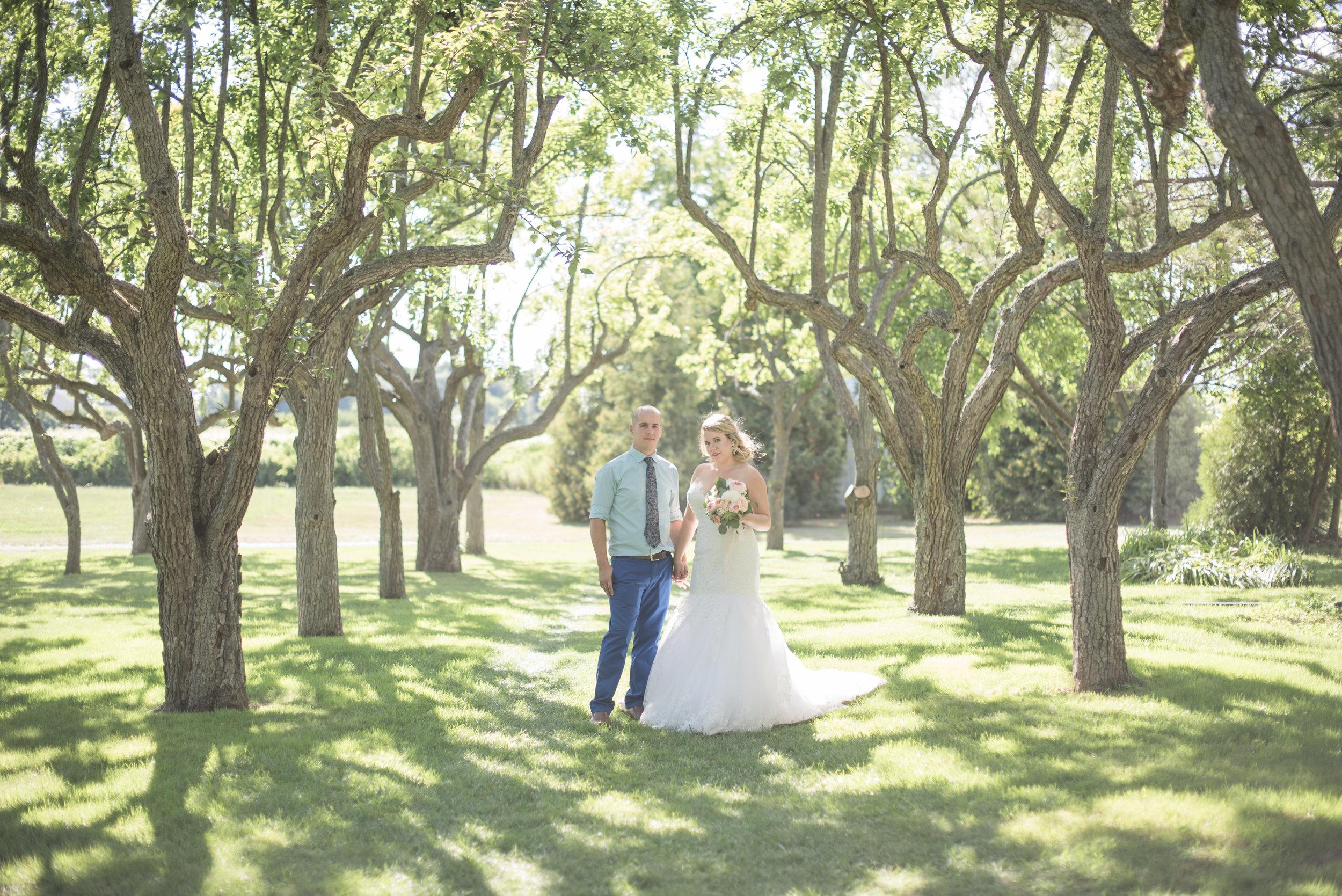 SN_weddingteasers-85.jpg