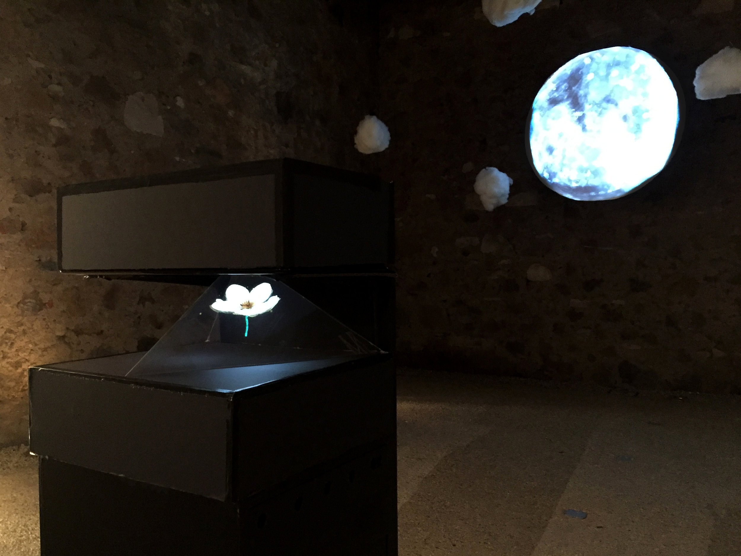 Hologram and projection by Vivien Mason