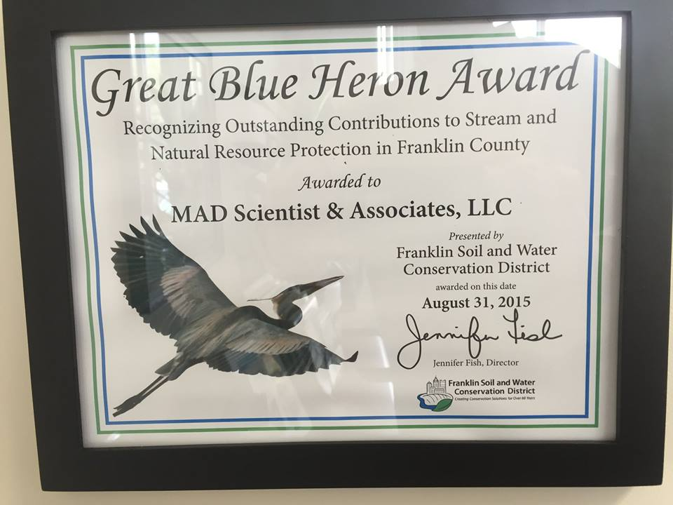GreatBlueHeronAward.jpg