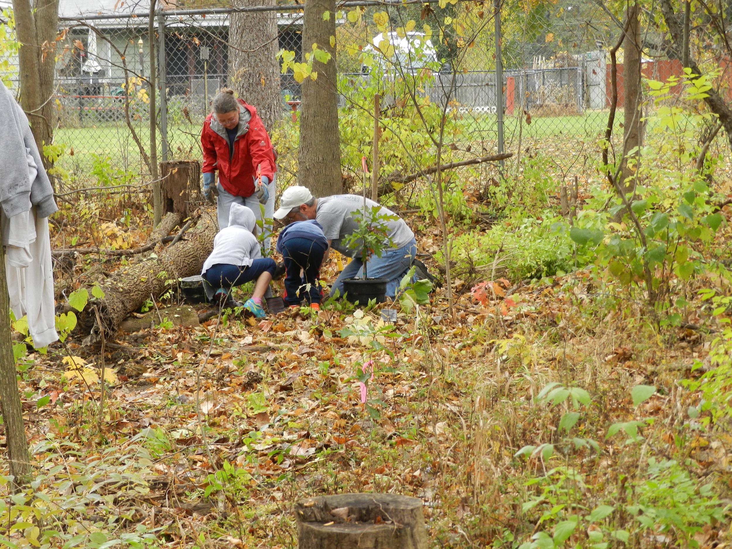Planting Native Trees at Boyer MAD.JPG
