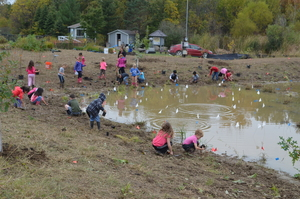 Wetland Planting - Community Service