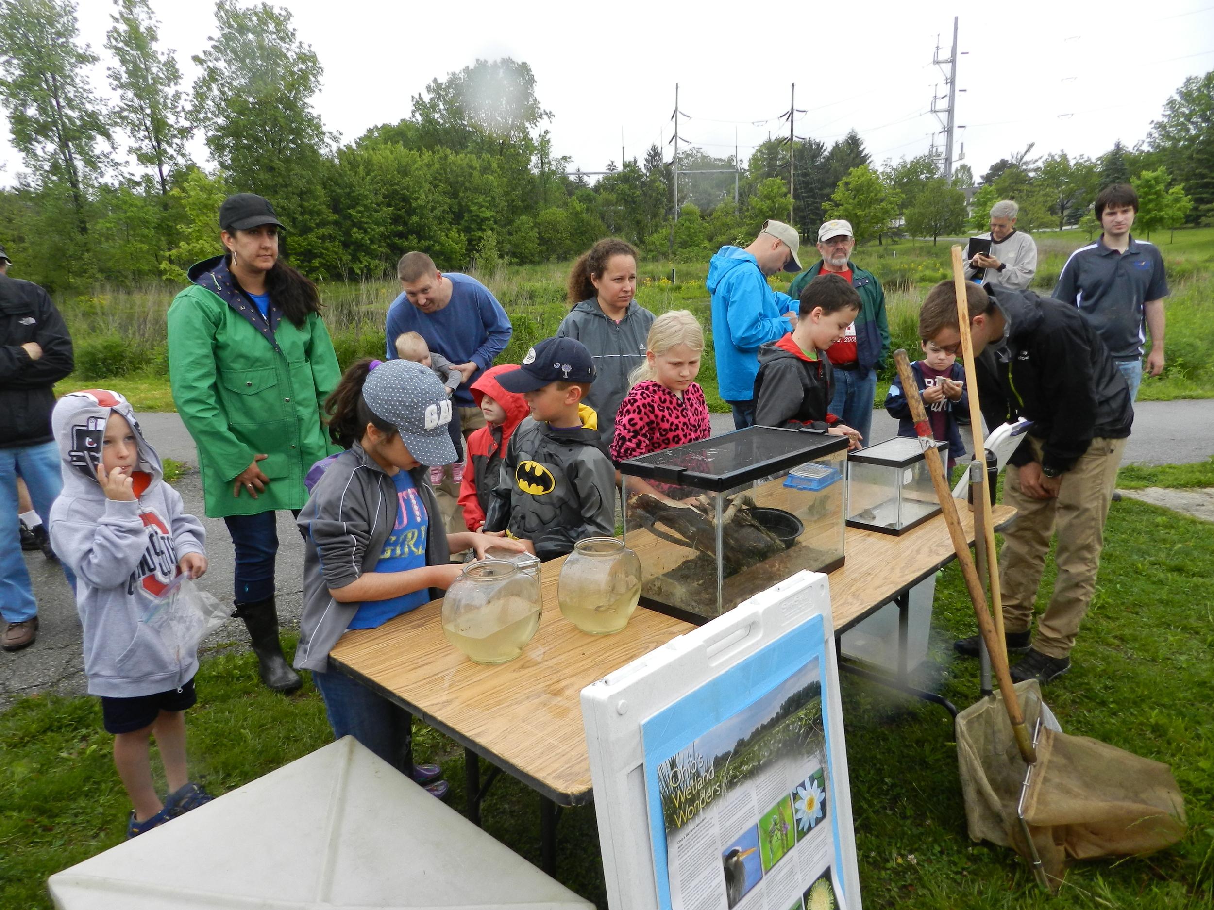 MAD Scientist - Wetland Workshop8.jpg