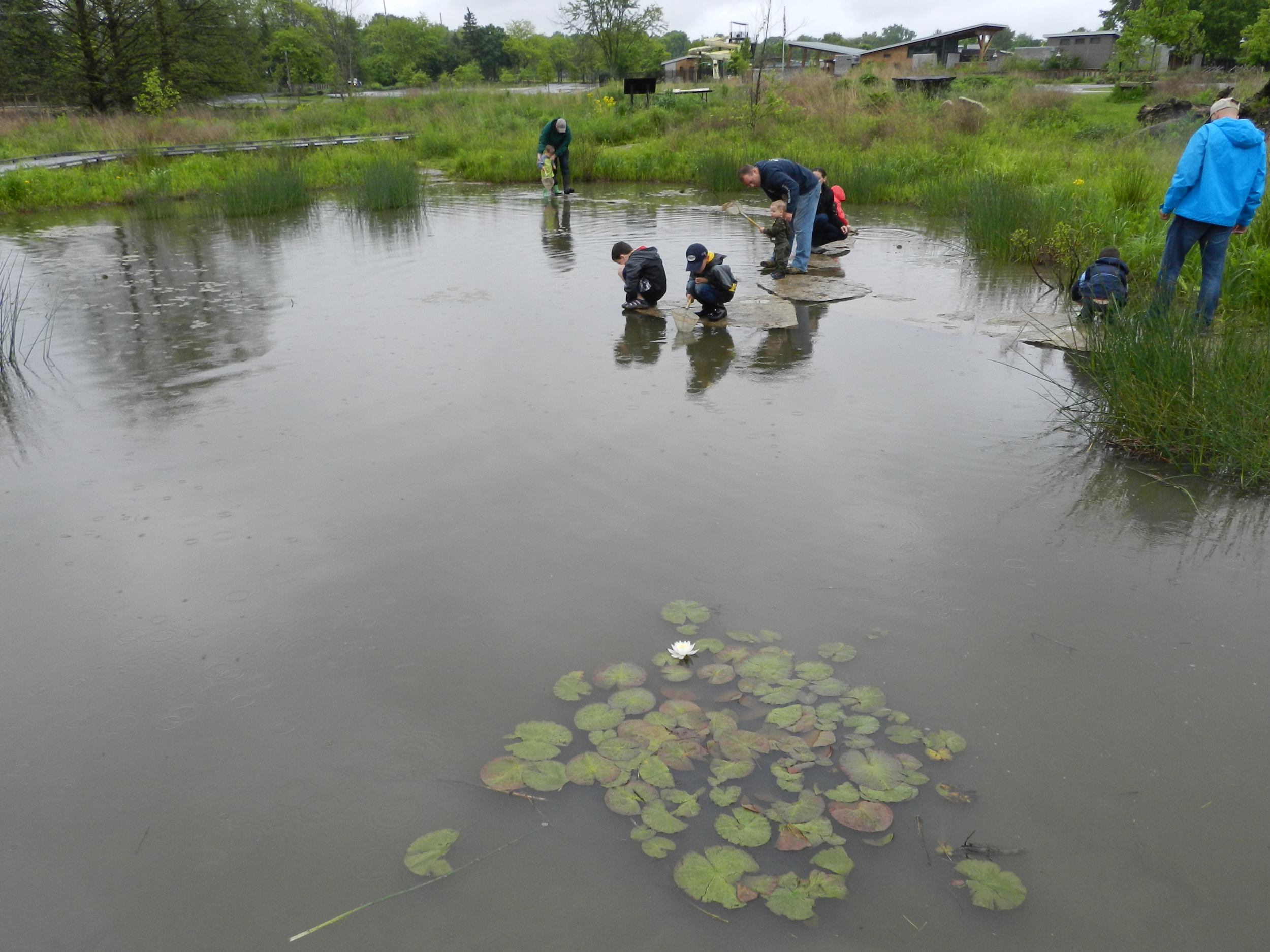 MAD Scientist Associates - Wetland Workshop16.jpg