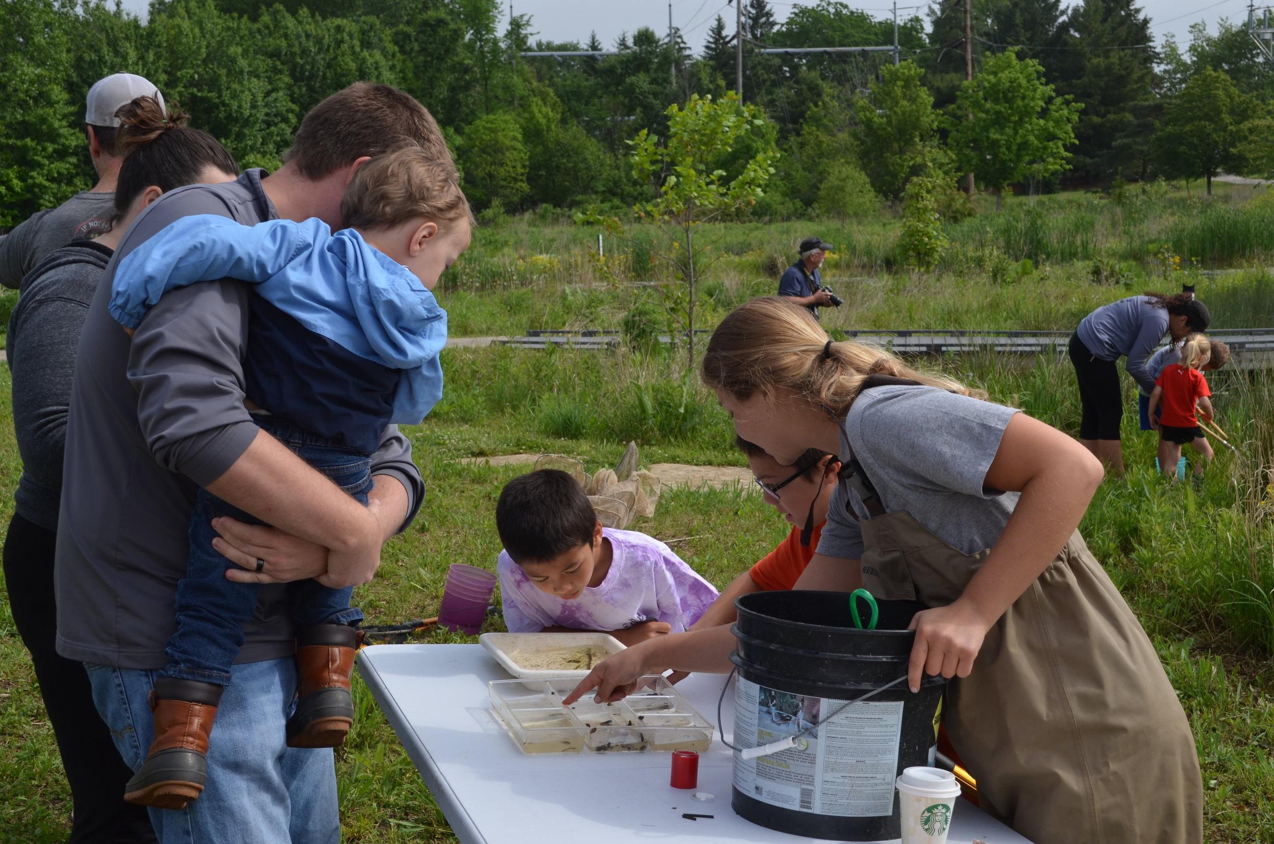 MADScientistAssoc-WetlandWorkshop2017-2