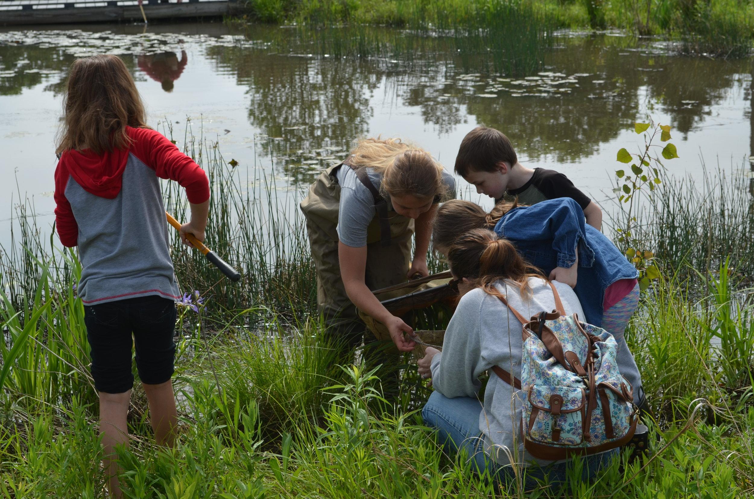 MADScientistAssoc-WetlandWorkshop2017-9