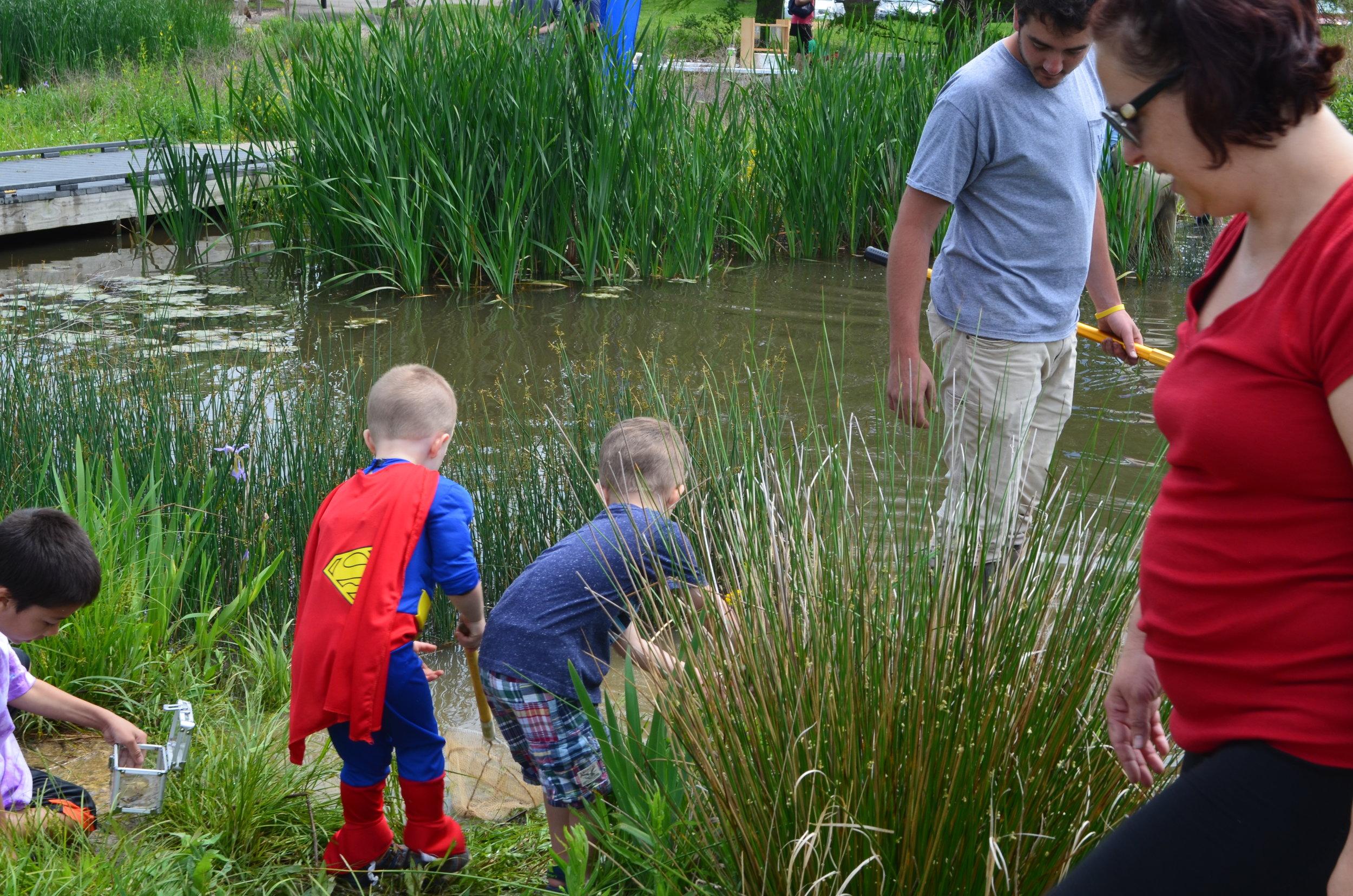 MADScientistAssoc-WetlandWorkshop2017-21